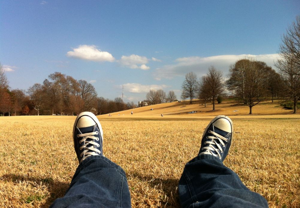 Burnout vermeiden und Entspannung finden in der Natur - Wiese als Symbolbild